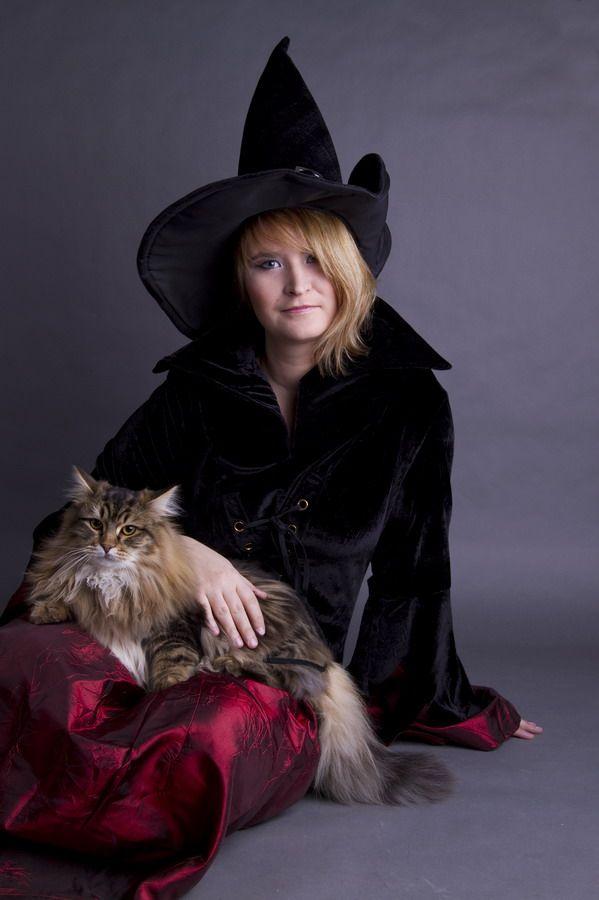 Felis Felicis - sibírska mačka 93f30cd789c