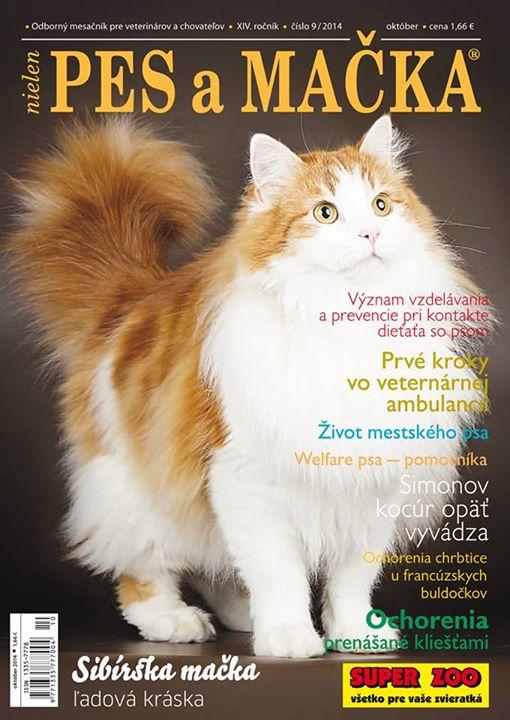 Naše mačky reprezentujú profil plemena Sibírska mačka v časopise Pes a Mačka 3757676024b